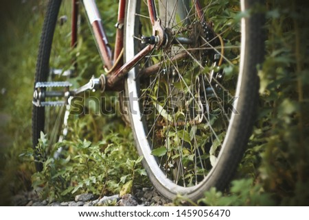 Red old rusty Bicycle that hasn't been ridden, is abandoned and overgrown with wild green grass. Nobody plays sports.