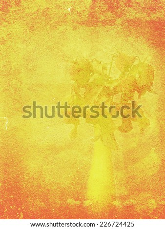 Red-orange painted wall, grunge background with rose bouquet shadow.