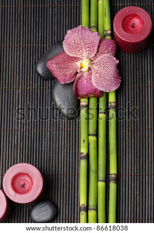 red orchid with thin bamboo grove and stones on bamboo mat texture