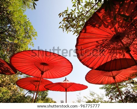 Red oriental bamboo umbrellas with leaf shadow under the sun
