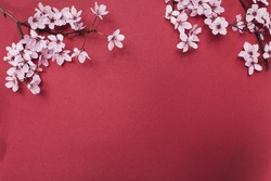 Red paper background with cherry blossom tree branches. Flat lay with spring elements and copy space