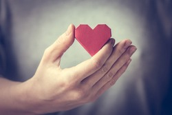Red paper heart in woman hands. Toned picture
