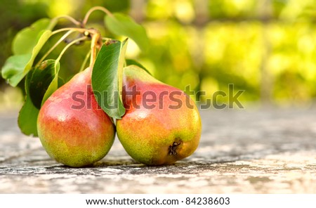 red pear with leaves