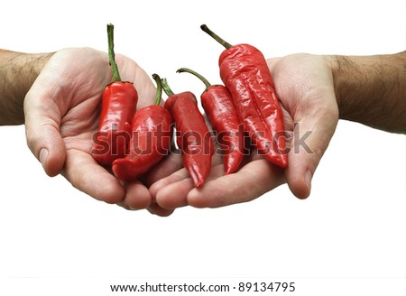 red pepper in a  hands isolated on white background