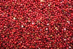 Red peppercorns for food texture