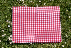 Red picnic cloth. Red checked picnic blanket on a meadow with daisies in bloom. Beautiful backdrop for your product placement or montage.