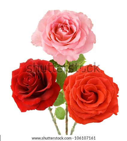 Red, pink and orange bouquet isolated on white background