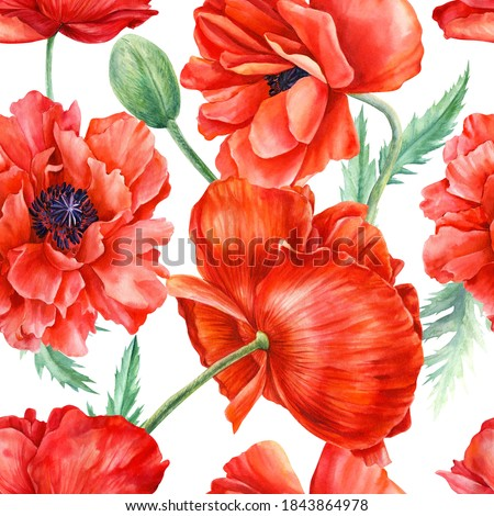Red poppies flowers on isolated background, watercolor illustration.Beautiful seamless pattern  Сток-фото ©