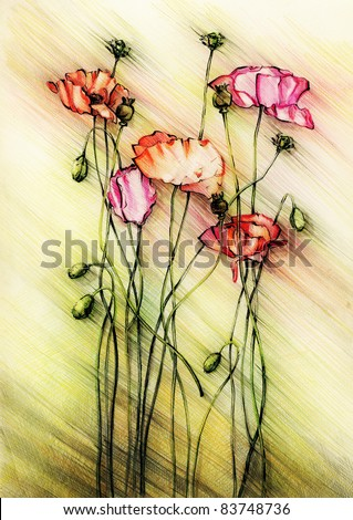 red poppies  Indian ink and  colored pencil drawing