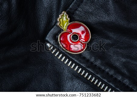 Red Poppy Pin as a Symbol of Remembrance Day, 11 November #751233682