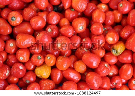 Red ripe round chillies, Dalle chillies as background  Photo stock ©