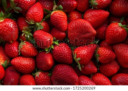 Red ripe strawberries background. Close up, top view.