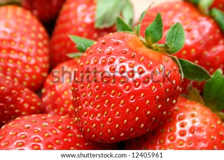 Red ripe strawberries close-up