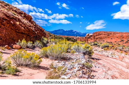 Red rock canyon desert landscape. Mountain red rock canyon landscape. Mountain red rock canyon. Red rock canyon desert
