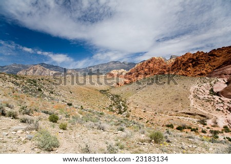 Red Rocks in the Red Rock Canyon National Reserve near Las Vegas, Nevada. Spring desert flowers in the foreground.