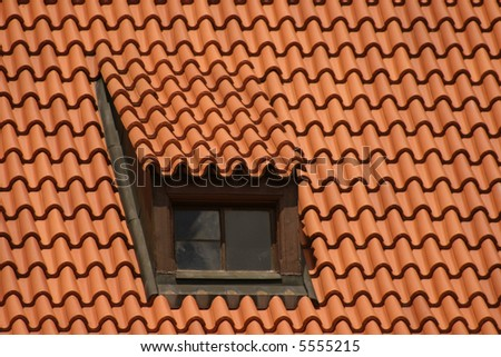 Red roof and old window
