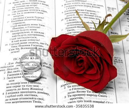 stock photo Red rosa and gold wedding ringa on the Bible