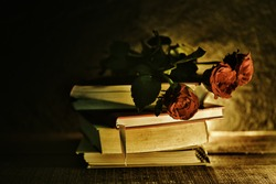Red rose and book love education and love in school concept / still life flowers on a books old in the dark background