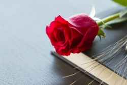Red rose and ear of wheat with black book