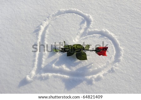 red rose and heart in snow as symbol for love