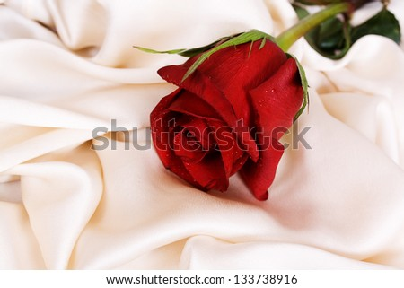 Red rose and white silk, and the concept of the wedding feast