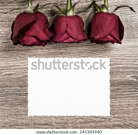 Red rose flower with blank sheet on wood background