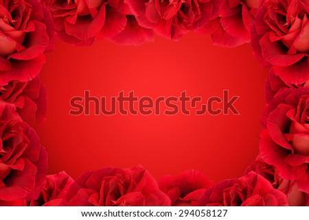 Red Rose frame background.