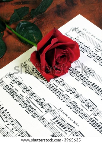 red rose lying on a music sheet