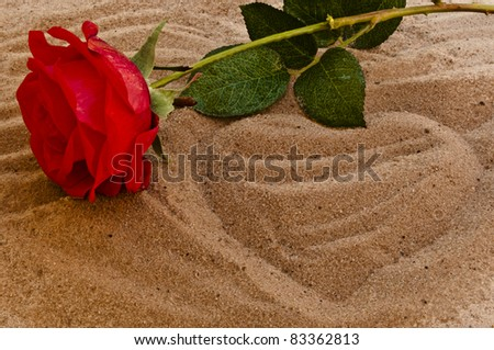 Red rose on the beach with a heart in the sand