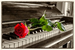 Red rose on the grand piano keys. Vintage view.