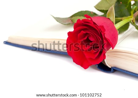 Red rose on the open book, isolated on white