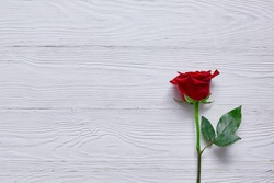 Red rose on the wooden table top. Minimalism and space for text, greeting or message