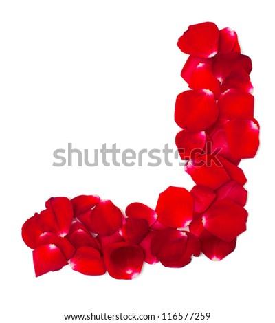 red rose petal corner