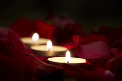 Red rose petals and candles.Romantic background,Valentine's day card