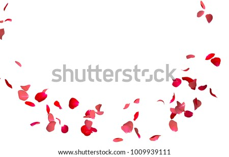Red rose petals fly in a circle. The center free space for Your photos or text. Isolated white background #1009939111