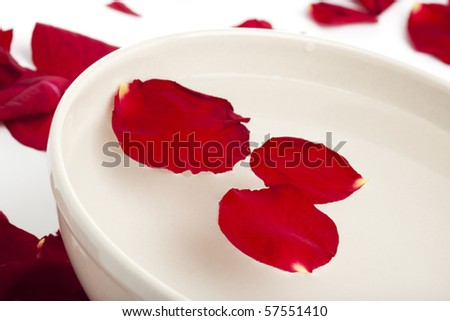 red rose petals in and around bowl of water