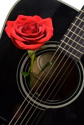 red rose positioned inside an old black acoustic guitar