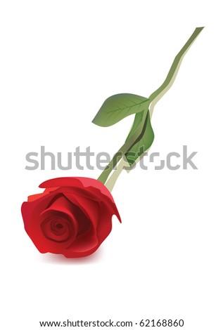 red rose raster version