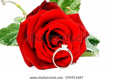 red rose with finger ring / red rose