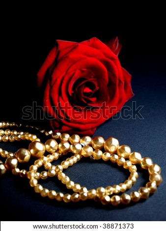 red rose with golden necklace