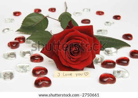 """Red Rose with hearts and """"I love you"""""""