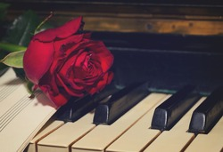 red rose with notes paper on vintage piano close up, retro toned
