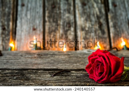 Red Rose with Rustic Old Barn Wood with Lights