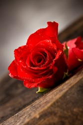 red rose with water drops on wooden table