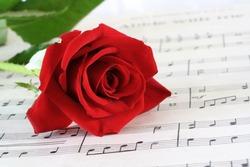 Red Rosebud resting on old sheet music.