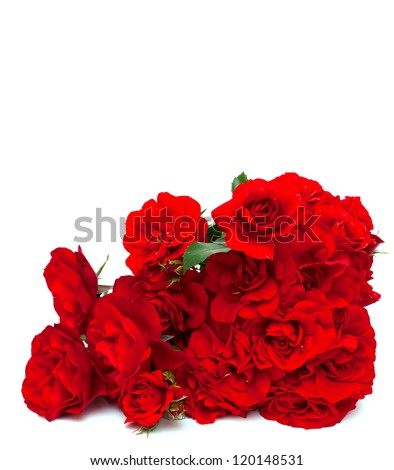 red roses and empty space for your text