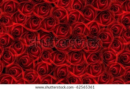 red roses in red and black vase isolated on white background - stock ...