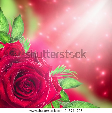 Red roses background with light and bokeh, holiday floral border