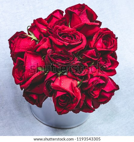 Red Roses Bouquet  #1193543305
