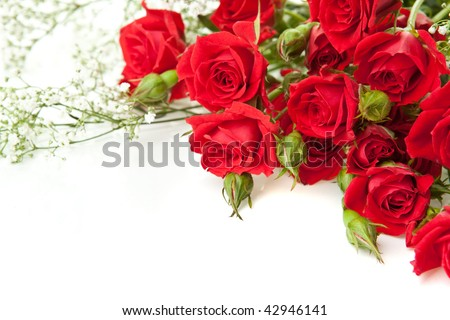 Red roses bouquet on a white background